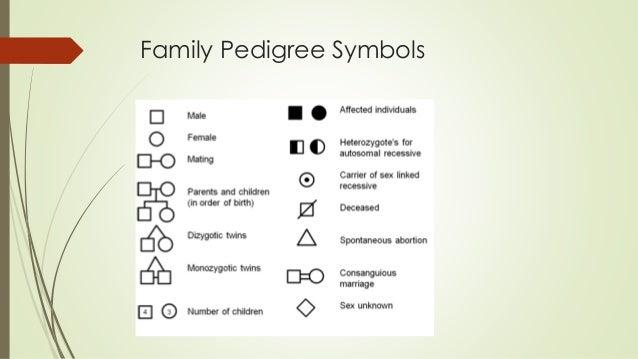 Lesson 12 Family Pedigree