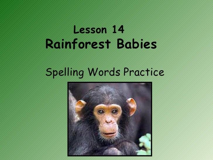 Lesson 14  Rainforest Babies Spelling Words Practice