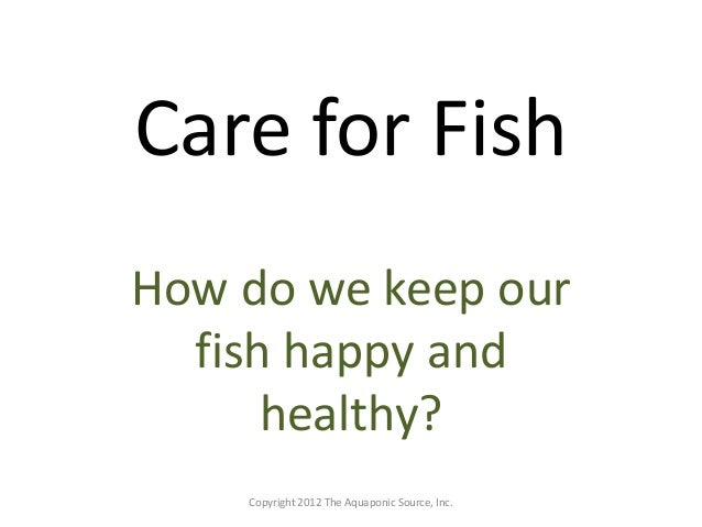 Care for Fish  How do we keep our  fish happy and  healthy?  Copyright 2012 The Aquaponic Source, Inc.