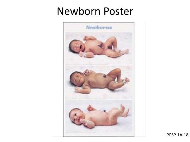 Newborn Poster                 PPSP 1A-18