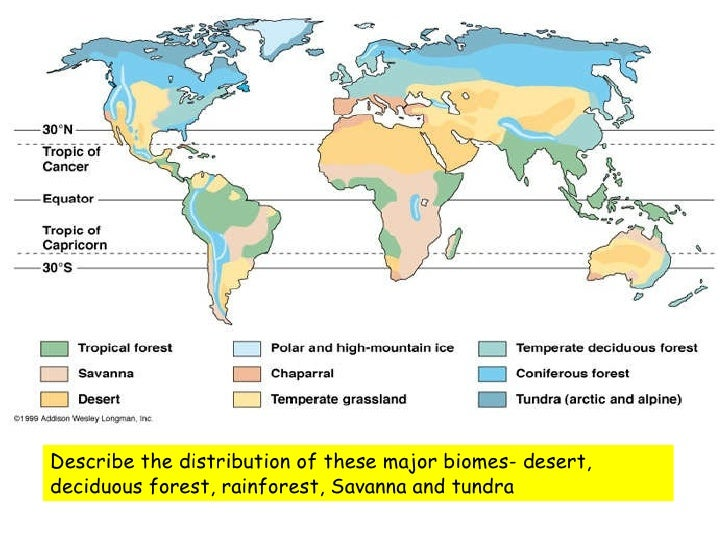 Lesson1battleforbiospherewhatandwherearebiomes living environment 4 describe the distribution of these major biomes gumiabroncs Choice Image
