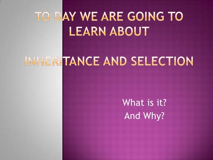 To day we are going to learn aboutInheritance and Selection<br />What is it?<br />And Why?<br />