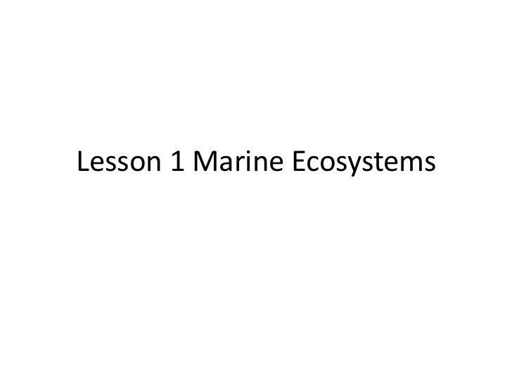 Lesson 1 Marine Ecosystems