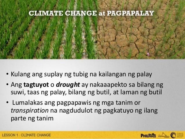 Green House Effect at Global Warming: Layunin,Mga bunga,Ang mga paraan upang maiwasan ang
