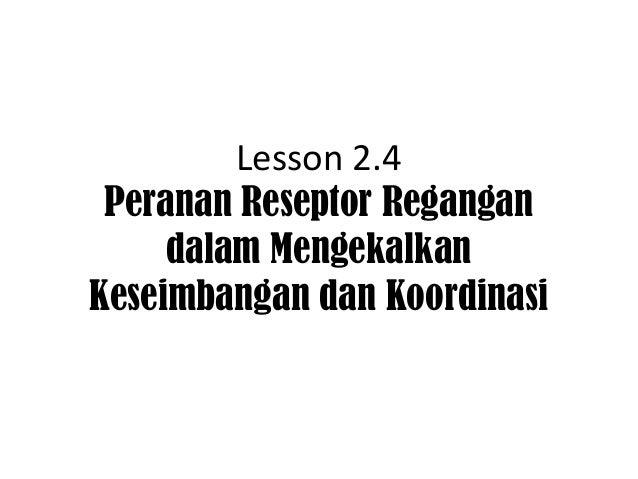Lesson 2.4 Peranan Reseptor Regangan     dalam MengekalkanKeseimbangan dan Koordinasi