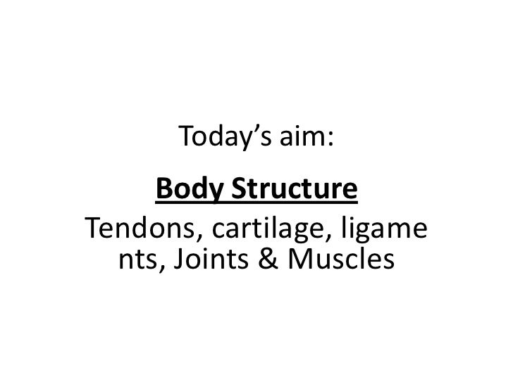 Today's aim:     Body StructureTendons, cartilage, ligame  nts, Joints & Muscles