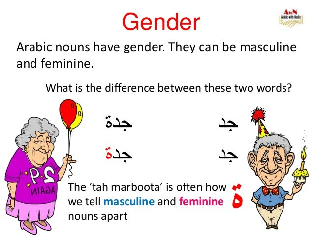 Gender Arabic nouns have gender. They can be masculine and feminine. جدة جد جد جدة ة The 'tah marboota' is oft...
