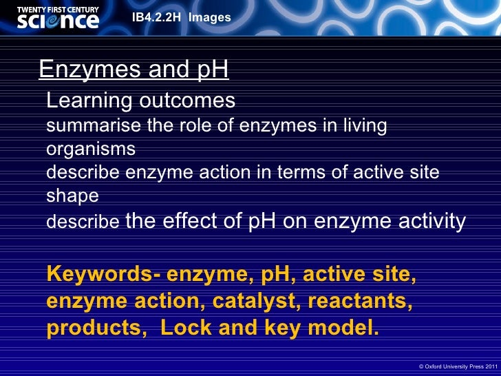 enzymes in living organisms What are microbes microbes are living, single-celled organisms such as fungi and bacteria microbes are the most effective producers of enzymes.