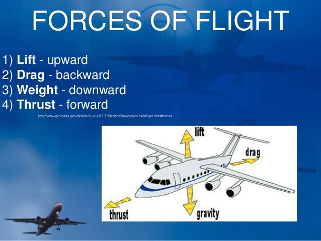 Lesson 2) forces of flight