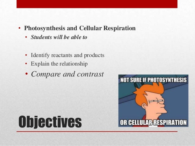 clarify the relationship between photosynthesis and cellular respiration