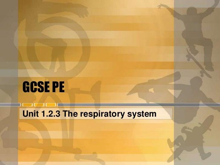 GCSE PEUnit 1.2.3 The respiratory system