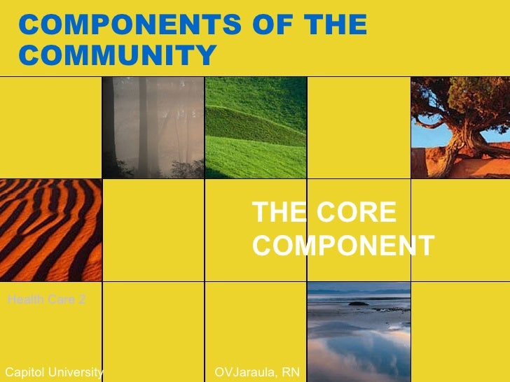 COMPONENTS OF THE COMMUNITY THE CORE COMPONENT Capitol University  OVJaraula, RN Health Care 2
