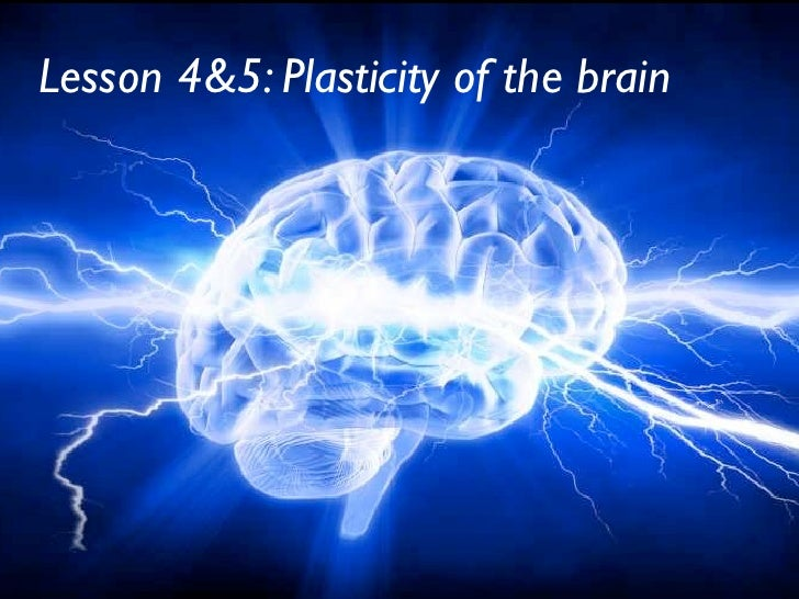 Lesson 4&5: Plasticity of the brain