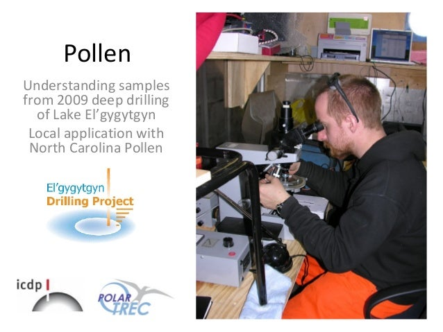 Pollen Understanding samples from 2009 deep drilling of Lake El'gygytgyn Local application with North Carolina Pollen