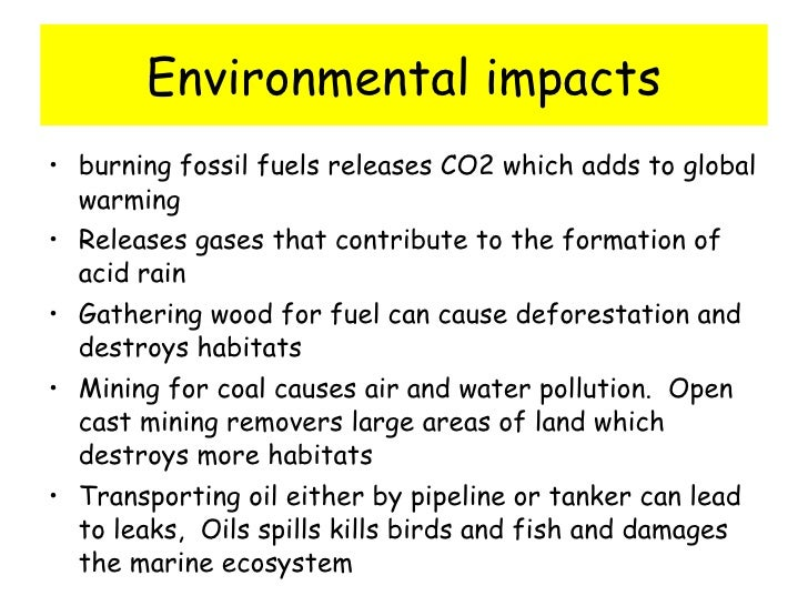 environmental effects of fossil fuels essay Report abuse home hot topics environment fossil fuels are a dead end fossil fuels are a dead end september 19, 2012 by because of the conspicuous effects.