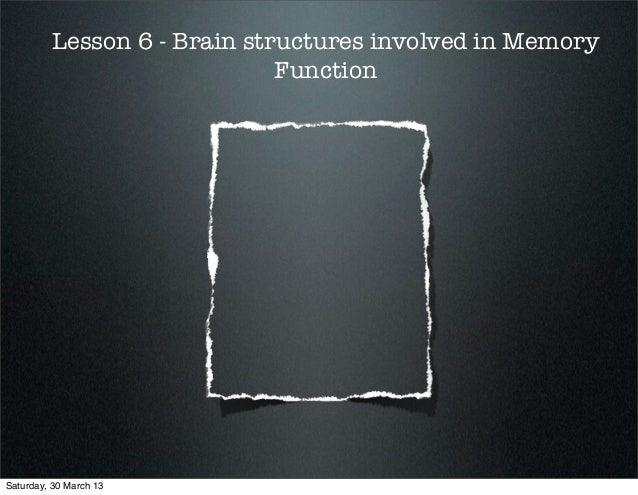 Lesson 6 - Brain structures involved in Memory                             FunctionSaturday, 30 March 13
