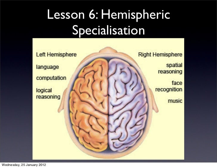 Lesson 6: Hemispheric                                 SpecialisationWednesday, 25 January 2012