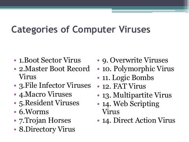Program Security
