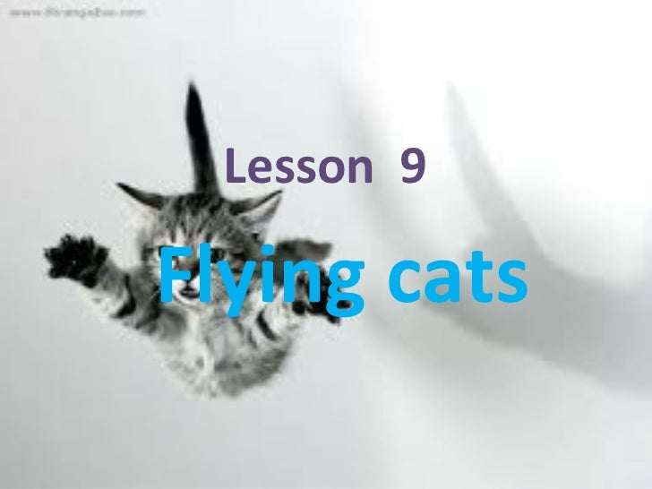Lesson  9  Flying cats