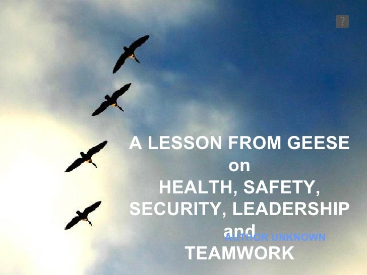 A LESSON FROM GEESE on HEALTH, SAFETY, SECURITY, LEADERSHIP and TEAMWORK AUTHOR UNKNOWN