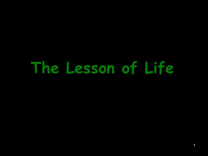 The Lesson of Life