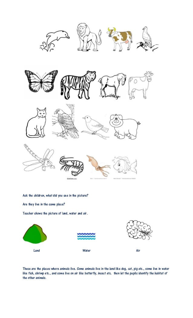 animal habitat worksheet