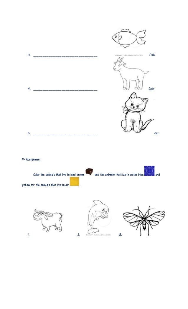 Lesson plan in kindergarten final