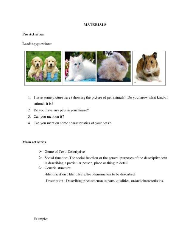 Lesson Plan For Writing Skill Descriptive