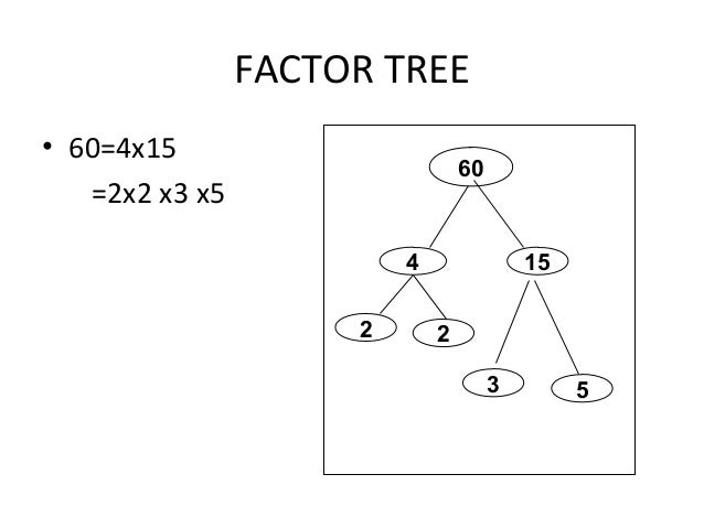 how to find lcm using factor tree