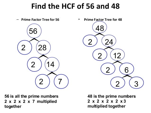 write 24 as a product of prime factors Write 24 as a product of its prime factors find the lcm of 18 and 24 - 252931.