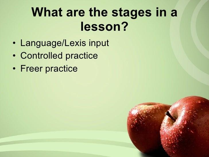 <ul><li>Language/Lexis input </li></ul><ul><li>Controlled practice </li></ul><ul><li>Freer practice </li></ul>What are the...