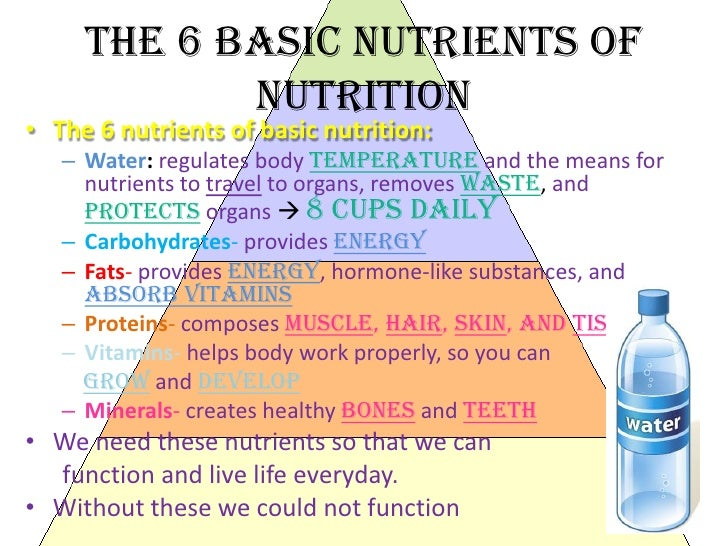 nutrition basic Good nutrition is the bedrock of child survival, health and development well-nourished children are better able to grow and learn, to participate in and contribute.