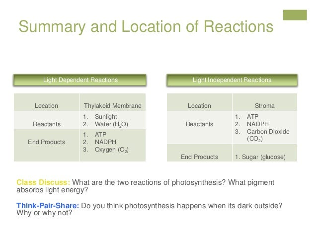 dependent reactions independent revised lesson plan location summary