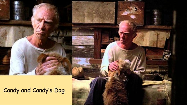 candy and his dog in of mice and men Free essay on of mice and men characters  all of the characters in of mice and men by john  between candy and his dog is like that.