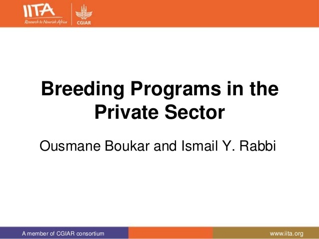 A member of CGIAR consortium www.iita.org Breeding Programs in the Private Sector Ousmane Boukar and Ismail Y. Rabbi