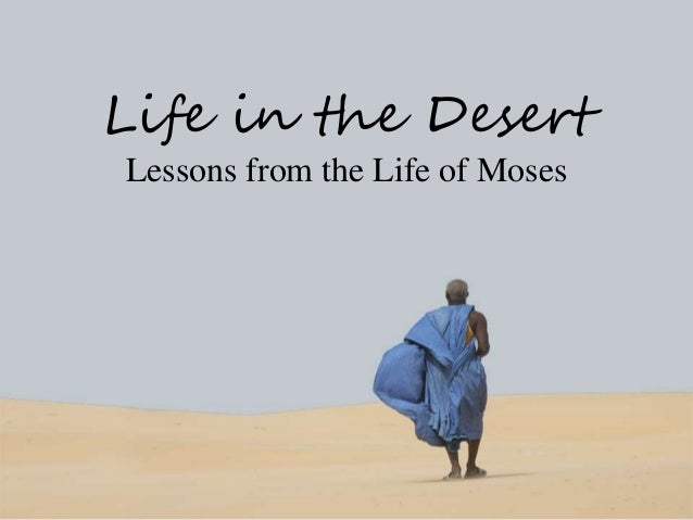 Lessons from the life of moses 4 lessons from the desert