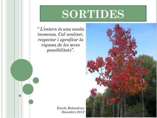 """SORTIDES"""" L'entorn és una escolaimmensa. Cal conèixer,respectar i aprofitar la  riquesa de les seves     possibilitats"""".  ..."""