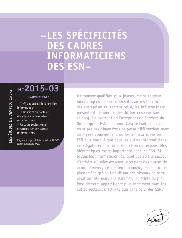 –LES SPÉCIFICITÉS DES CADRES INFORMATICIENS DES ESN– LESÉTUDESDEL'EMPLOICADRE – Profil des cadres de la fonction informatiq...