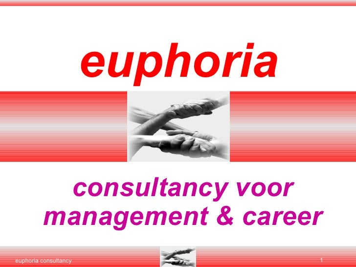 euphoria consultancy voor management & career