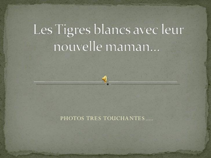PHOTOS TRES TOUCHANTES.....