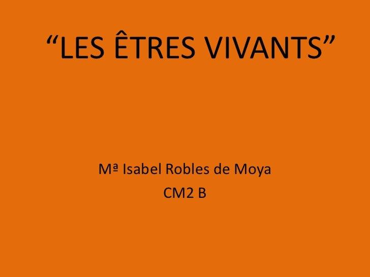 """""""LES ÊTRES VIVANTS""""   Mª Isabel Robles de Moya            CM2 B"""