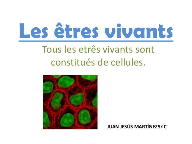 Les êtres vivants  Tous les etrês vivants sont    constitués de cellules.                 JUAN JESÚS MARTÍNEZ5º C
