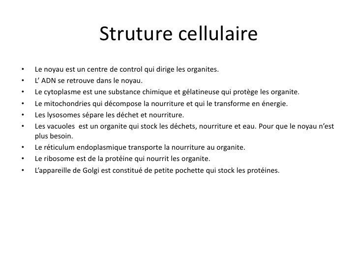 Les types de cellules Slide 3