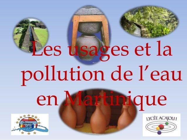 Les usages et la pollution de l'eau en Martinique