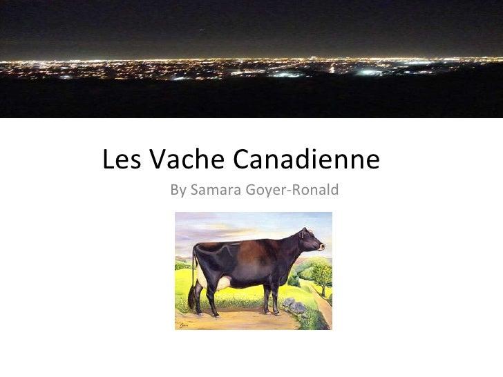 Les Vache Canadienne By Samara Goyer-Ronald