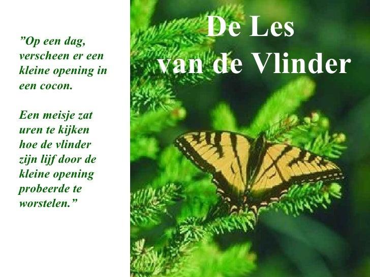 """De Les  van de Vlinder """" Op een dag, verscheen er een kleine opening in een cocon. Een meisje zat uren te kijken hoe de vl..."""