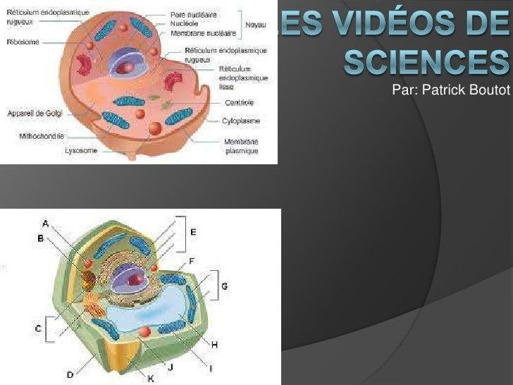 Les vidéos de sciences <br />Par: Patrick Boutot <br />