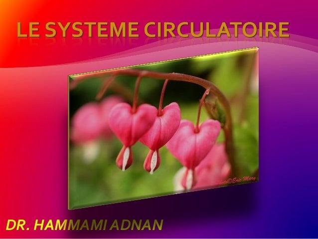 DR. HAMMAMI ADNAN