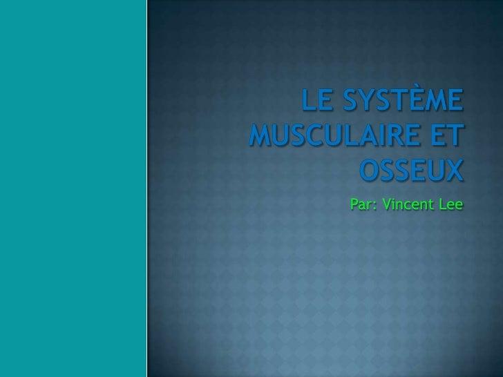 Le système musculaire et osseux <br />Par: Vincent Lee<br />