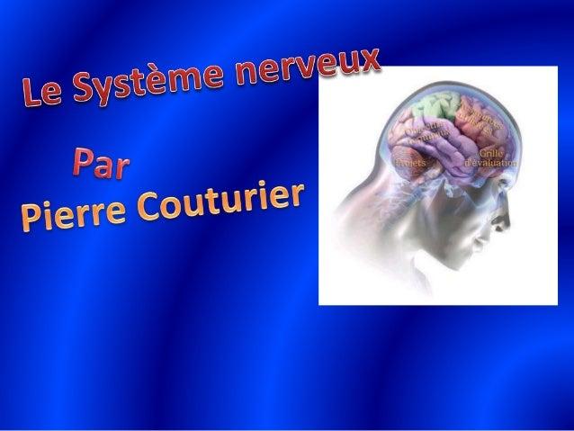 Le système nerveu pierre couturier